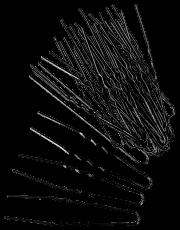Haarklemmen 7 cm schwarz